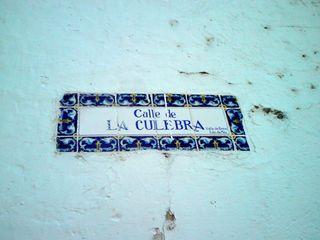 Clip culebra